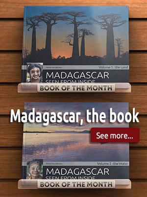 Madagascar the book